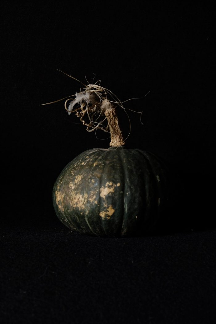Pumpkin on black (October 2017)