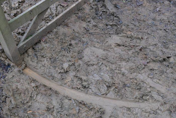 Mud.  Marks.