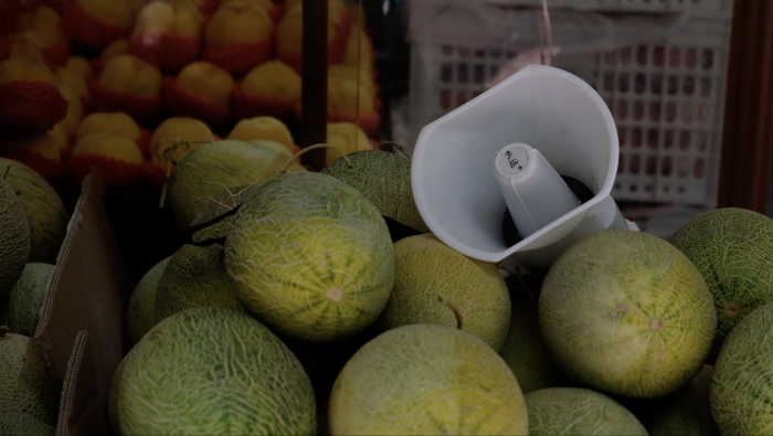 Melons. Amplified.  (Hangzhou – August, 2019)